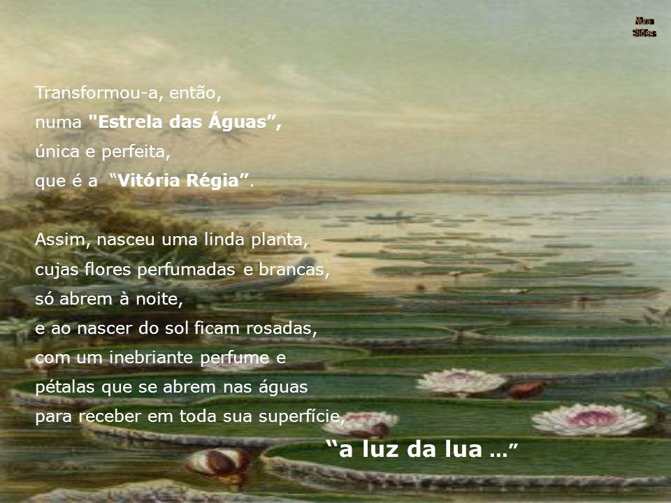 """Um dia, tendo parado para descansar à beira de um lago, viu em sua superfície a imagem da deusa amada: """"a Lua refletida em suas águas..."""" Cega pelo se"""