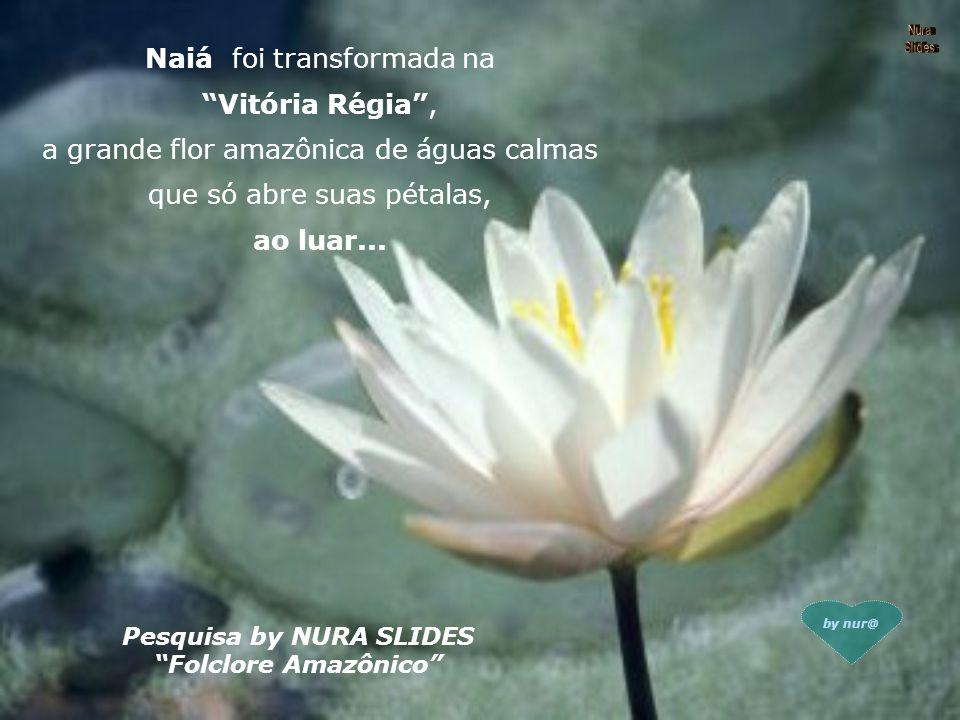 Naiá foi transformada na Vitória Régia , a grande flor amazônica de águas calmas que só abre suas pétalas, ao luar...