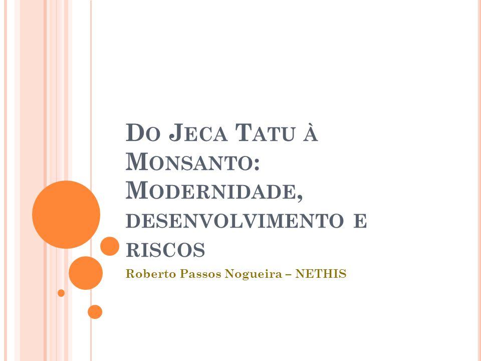D O J ECA T ATU À M ONSANTO : M ODERNIDADE, DESENVOLVIMENTO E RISCOS Roberto Passos Nogueira – NETHIS