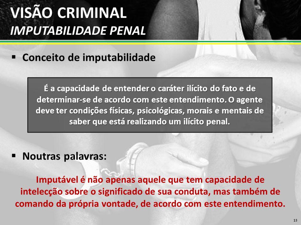 VISÃO CRIMINAL IMPUTABILIDADE PENAL  Conceito de imputabilidade 13 É a capacidade de entender o caráter ilícito do fato e de determinar-se de acordo com este entendimento.