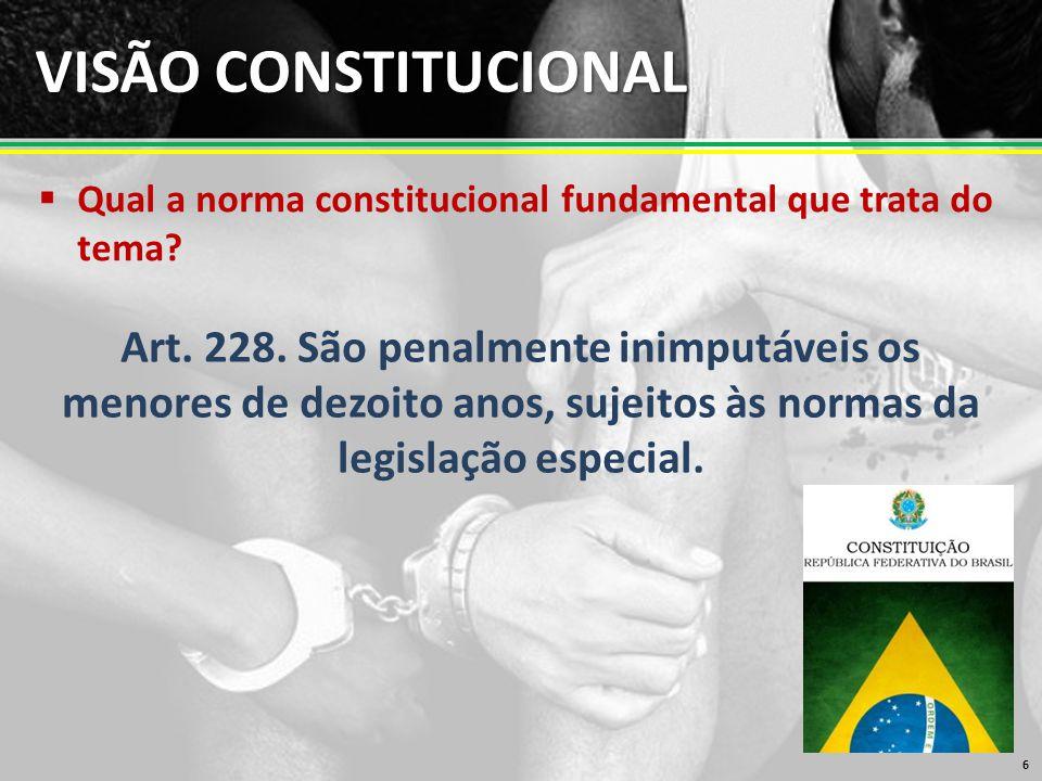 VISÃO CONSTITUCIONAL  Qual a norma constitucional fundamental que trata do tema.