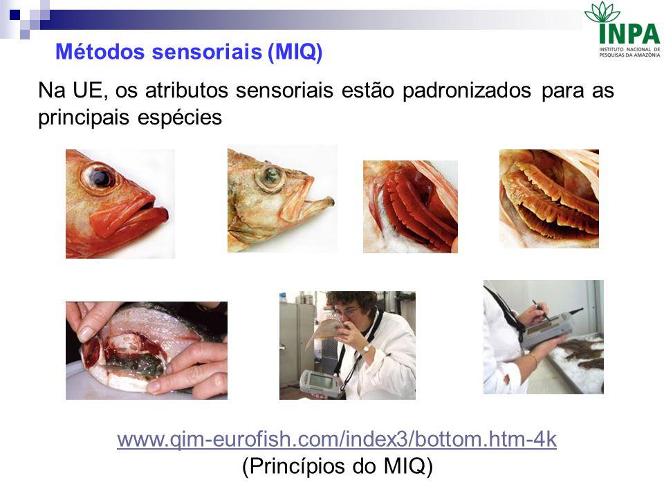 Métodos sensoriais (MIQ) www.qim-eurofish.com/index3/bottom.htm-4k (Princípios do MIQ) Na UE, os atributos sensoriais estão padronizados para as princ