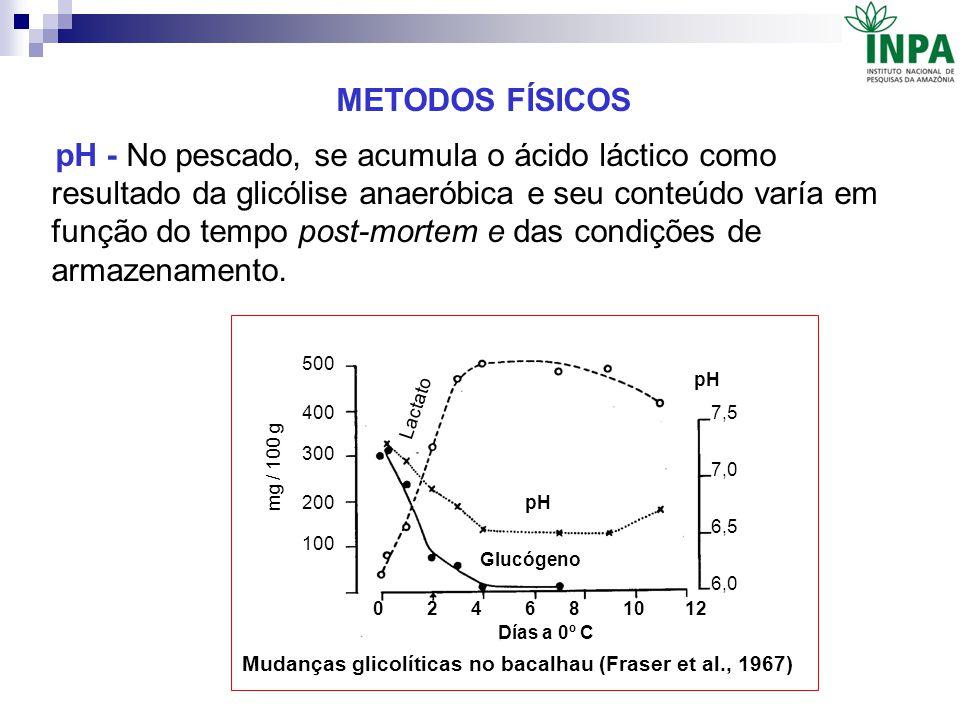 METODOS FÍSICOS pH - No pescado, se acumula o ácido láctico como resultado da glicólise anaeróbica e seu conteúdo varía em função do tempo post-mortem