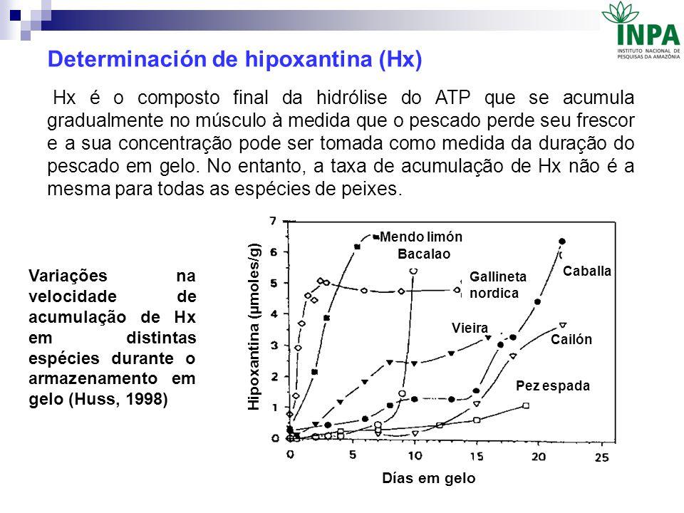 Determinación de hipoxantina (Hx) Hx é o composto final da hidrólise do ATP que se acumula gradualmente no músculo à medida que o pescado perde seu fr