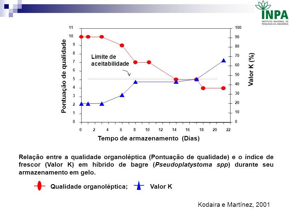 Relação entre a qualidade organoléptica (Pontuação de qualidade) e o índice de frescor (Valor K) em híbrido de bagre (Pseudoplatystoma spp) durante se