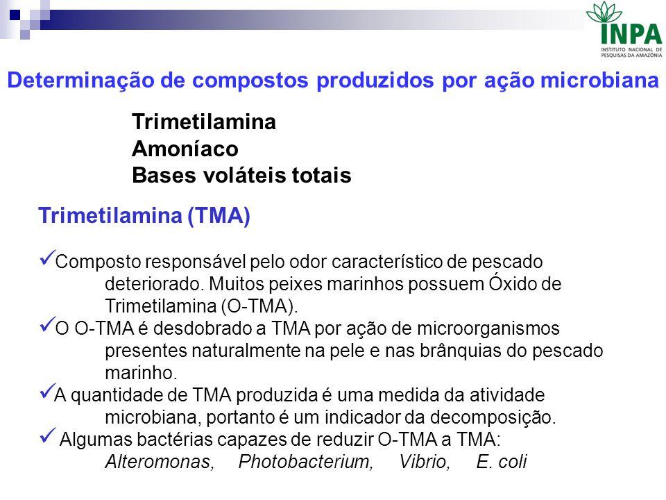 Determinação de compostos produzidos por ação microbiana Trimetilamina (TMA) Composto responsável pelo odor característico de pescado deteriorado. Mui