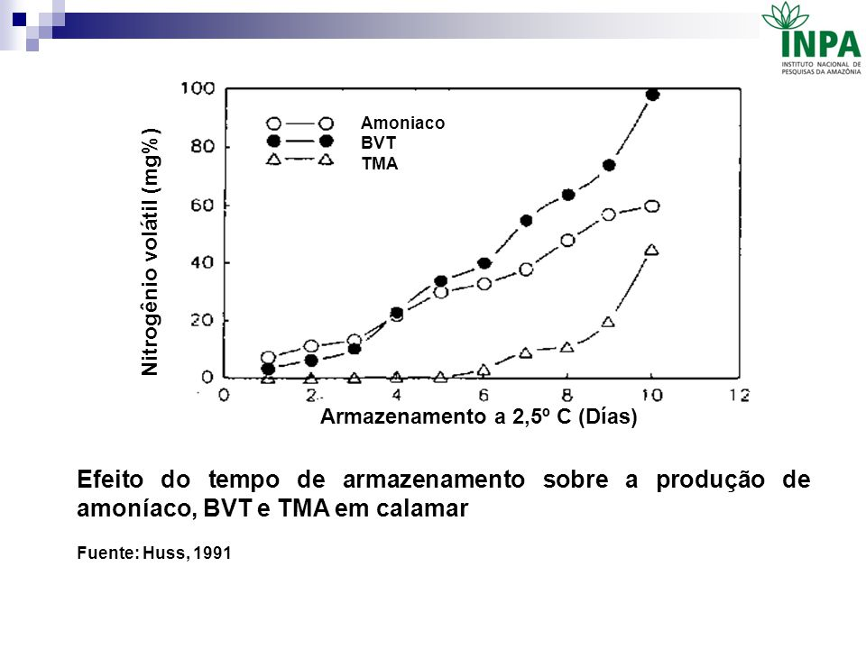 Efeito do tempo de armazenamento sobre a produção de amoníaco, BVT e TMA em calamar Fuente: Huss, 1991 Nitrogênio volátil (mg%) Armazenamento a 2,5º C