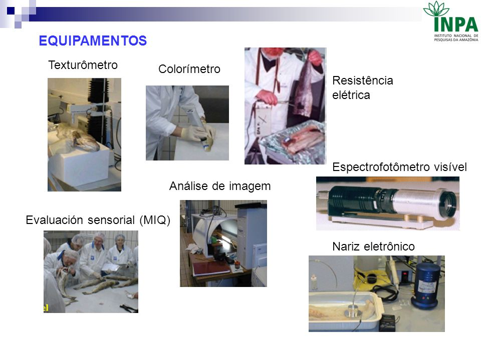 Texturômetro Colorímetro Evaluación sensorial (MIQ) Análise de imagem Resistência elétrica Espectrofotômetro visível Nariz eletrônico EQUIPAMENTOS