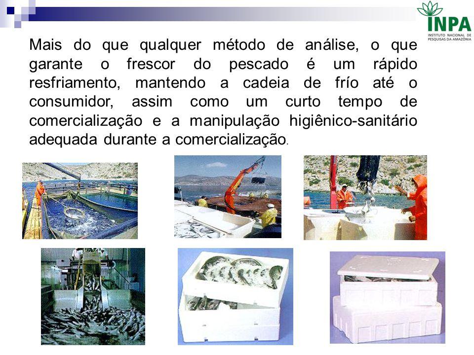 Mais do que qualquer método de análise, o que garante o frescor do pescado é um rápido resfriamento, mantendo a cadeia de frío até o consumidor, assim