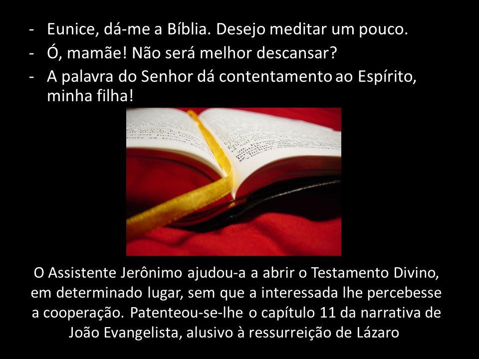O Assistente Jerônimo ajudou-a a abrir o Testamento Divino, em determinado lugar, sem que a interessada lhe percebesse a cooperação. Patenteou-se-lhe