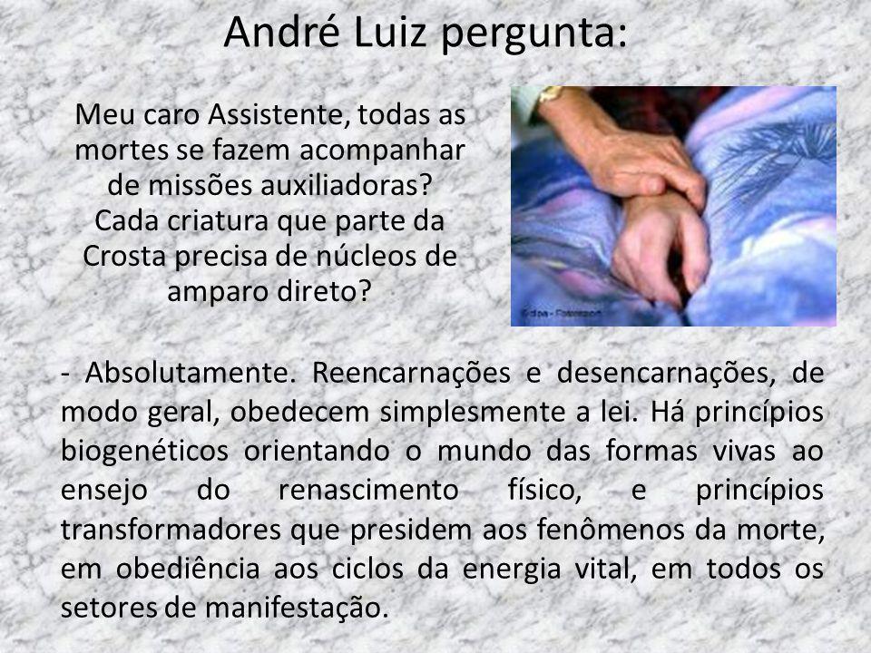 André Luiz pergunta: Meu caro Assistente, todas as mortes se fazem acompanhar de missões auxiliadoras? Cada criatura que parte da Crosta precisa de nú