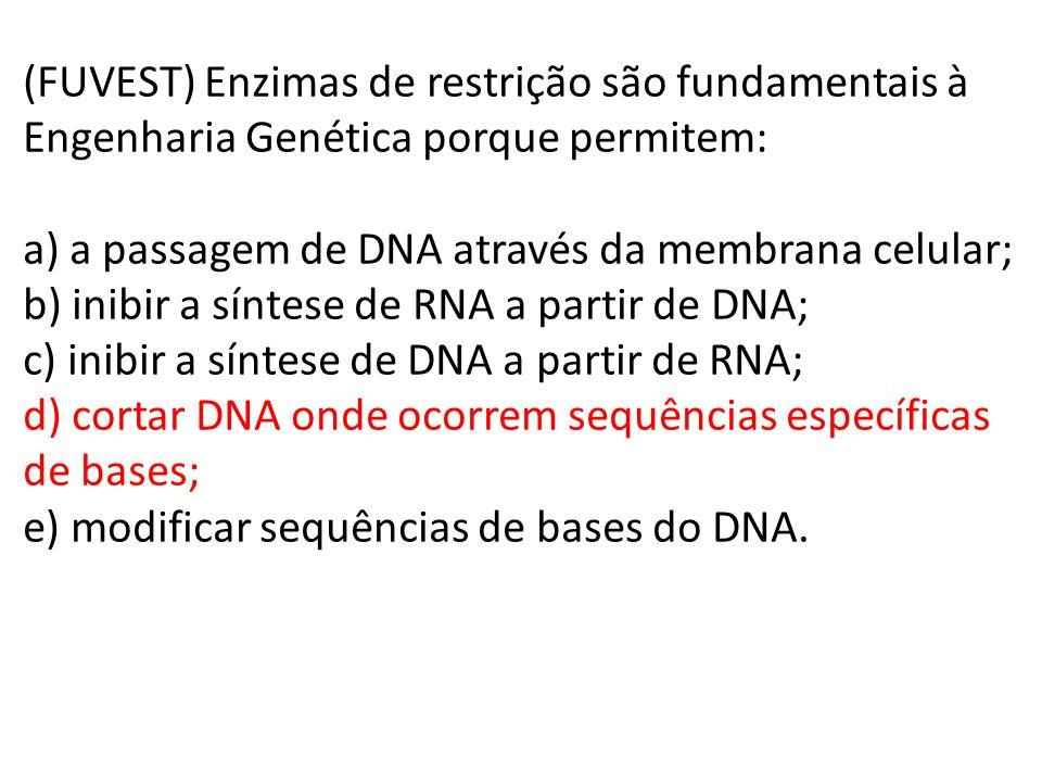 (FUVEST) Enzimas de restrição são fundamentais à Engenharia Genética porque permitem: a) a passagem de DNA através da membrana celular; b) inibir a sí