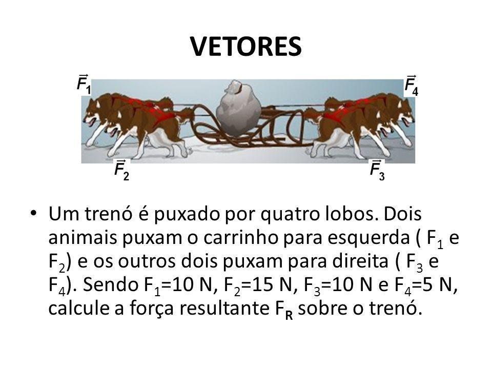 VETORES Um trenó é puxado por quatro lobos. Dois animais puxam o carrinho para esquerda ( F 1 e F 2 ) e os outros dois puxam para direita ( F 3 e F 4