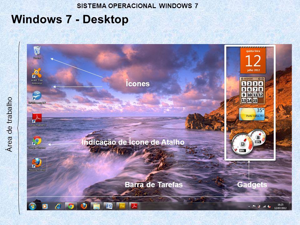 Criando uma pasta ou arquivo Windows 7 – Windows Explorer SISTEMA OPERACIONAL WINDOWS 7 Renomeando uma pasta ou arquivo Excluindo uma pasta ou arquivo Movendo uma pasta ou arquivo Copiando uma pasta ou arquivo