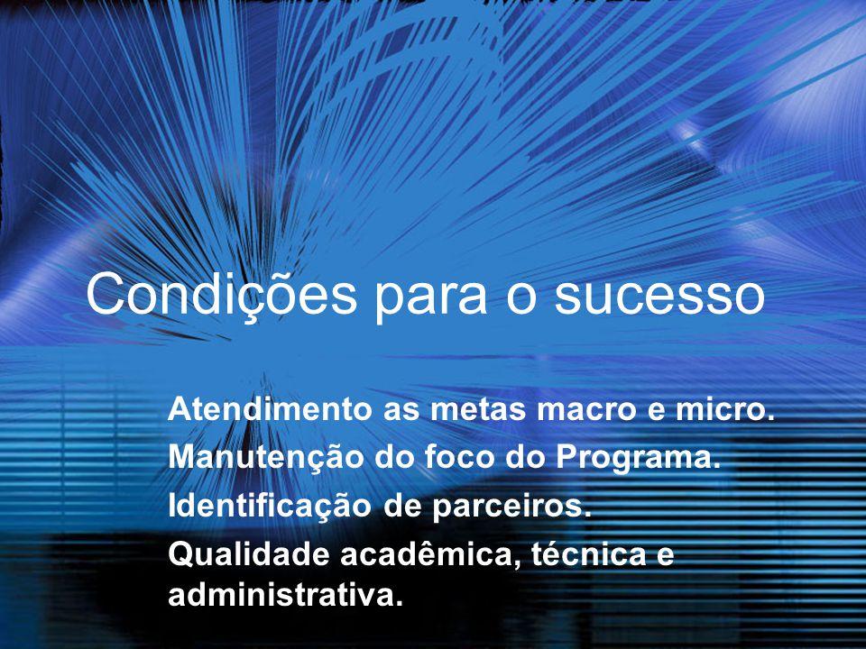 Condições para o sucesso Atendimento as metas macro e micro. Manutenção do foco do Programa. Identificação de parceiros. Qualidade acadêmica, técnica