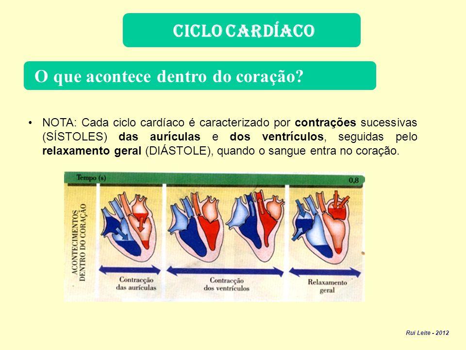 Válvulas do Coração Qual a função das válvulas.