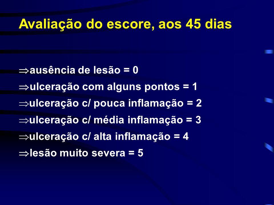  ausência de lesão = 0  ulceração com alguns pontos = 1  ulceração c/ pouca inflamação = 2  ulceração c/ média inflamação = 3  ulceração c/ alta