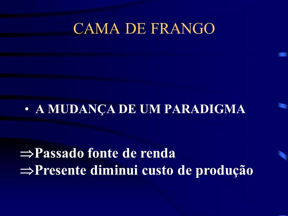 CAMA DE FRANGO A MUDANÇA DE UM PARADIGMA  Passado fonte de renda  Presente diminui custo de produção