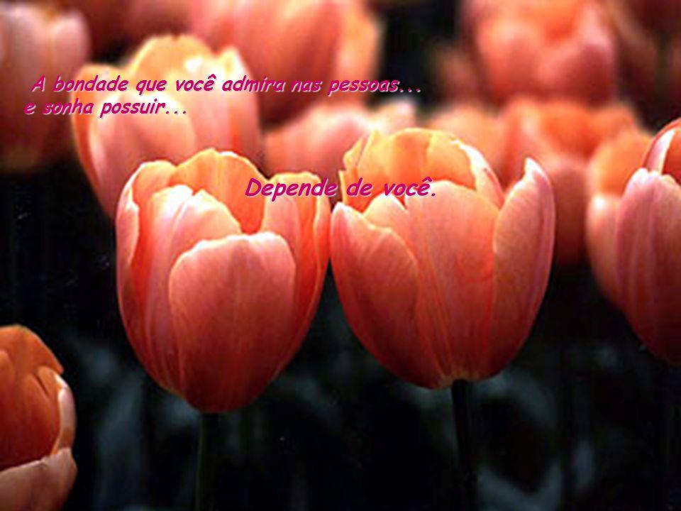 A bondade que você admira nas pessoas... e sonha possuir... Depende de você.