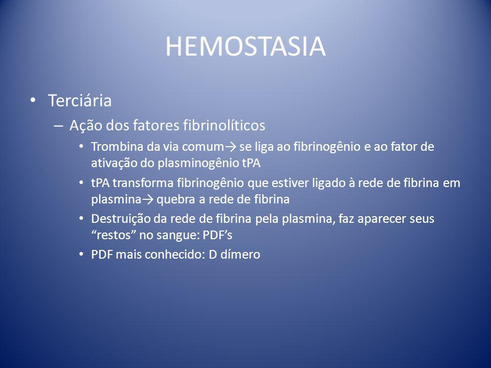 HEMOSTASIA Terciária – Ação dos fatores fibrinolíticos Trombina da via comum→ se liga ao fibrinogênio e ao fator de ativação do plasminogênio tPA tPA