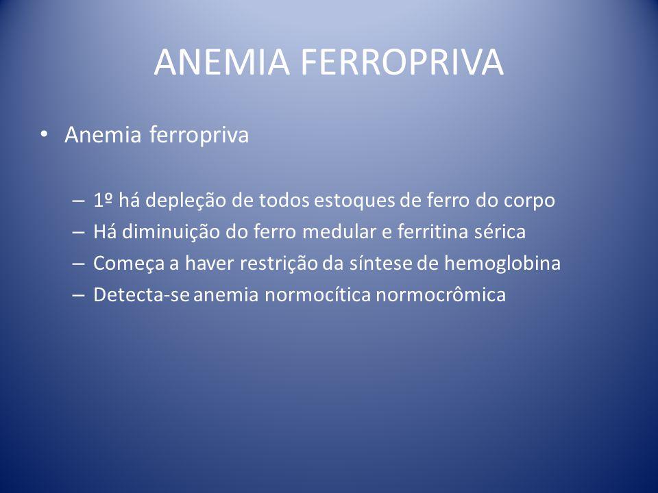 ANEMIA FERROPRIVA Anemia ferropriva – 1º há depleção de todos estoques de ferro do corpo – Há diminuição do ferro medular e ferritina sérica – Começa