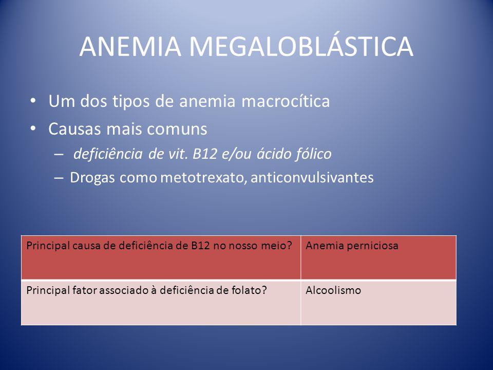 ANEMIA MEGALOBLÁSTICA Um dos tipos de anemia macrocítica Causas mais comuns – deficiência de vit. B12 e/ou ácido fólico – Drogas como metotrexato, ant