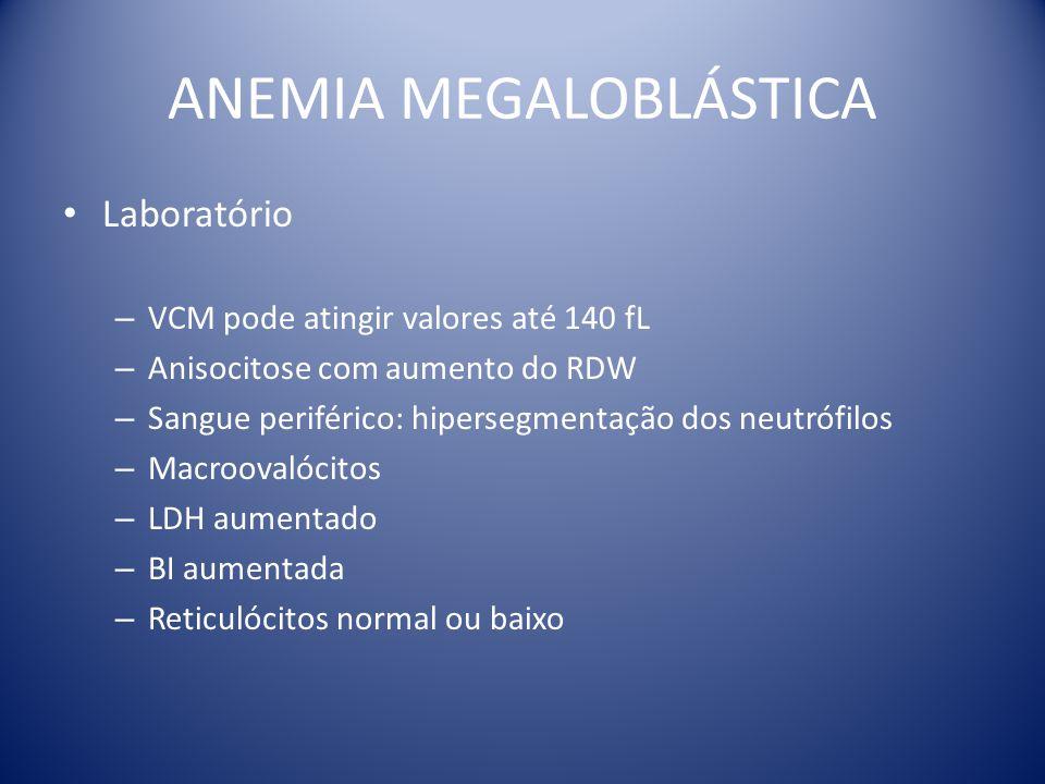 ANEMIA MEGALOBLÁSTICA Laboratório – VCM pode atingir valores até 140 fL – Anisocitose com aumento do RDW – Sangue periférico: hipersegmentação dos neu