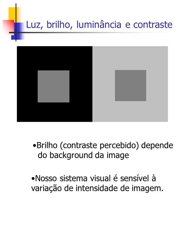 Luz, brilho, luminância e contraste Nosso sistema visual é sensível à variação de intensidade de imagem.