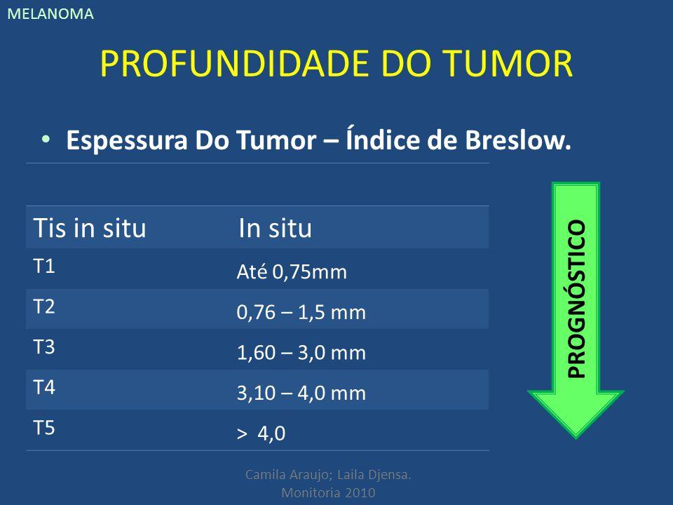 Camila Araujo; Laila Djensa. Monitoria 2010 MELANOMA PROFUNDIDADE DO TUMOR Espessura Do Tumor – Índice de Breslow. Tis in situIn situ T1 Até 0,75mm T2