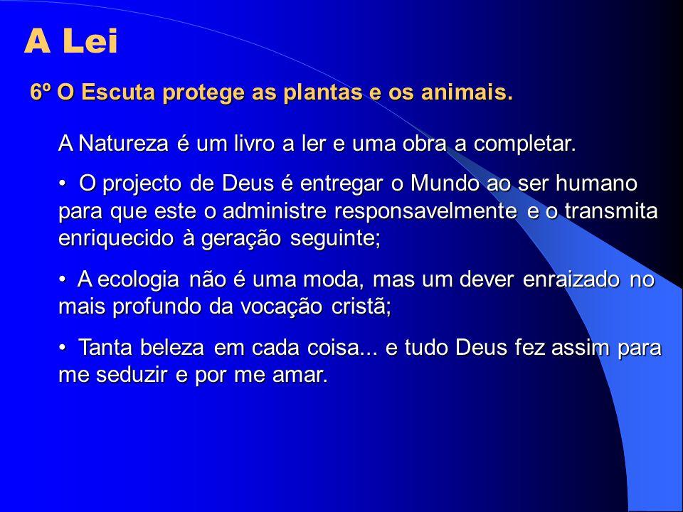A Lei 6º O Escuta protege as plantas e os animais. A Natureza é um livro a ler e uma obra a completar. O projecto de Deus é entregar o Mundo ao ser hu