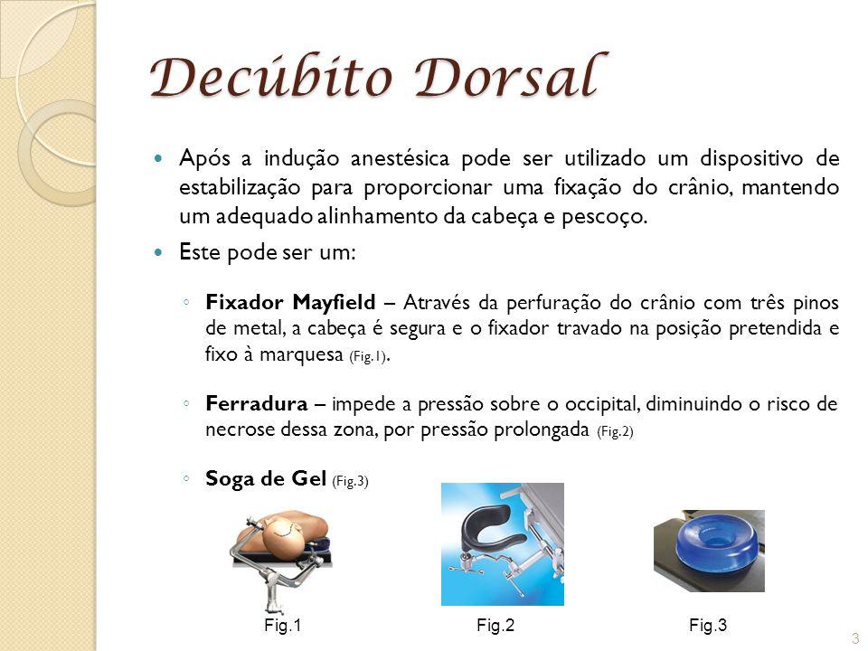 Decúbito Dorsal Após a indução anestésica pode ser utilizado um dispositivo de estabilização para proporcionar uma fixação do crânio, mantendo um adeq