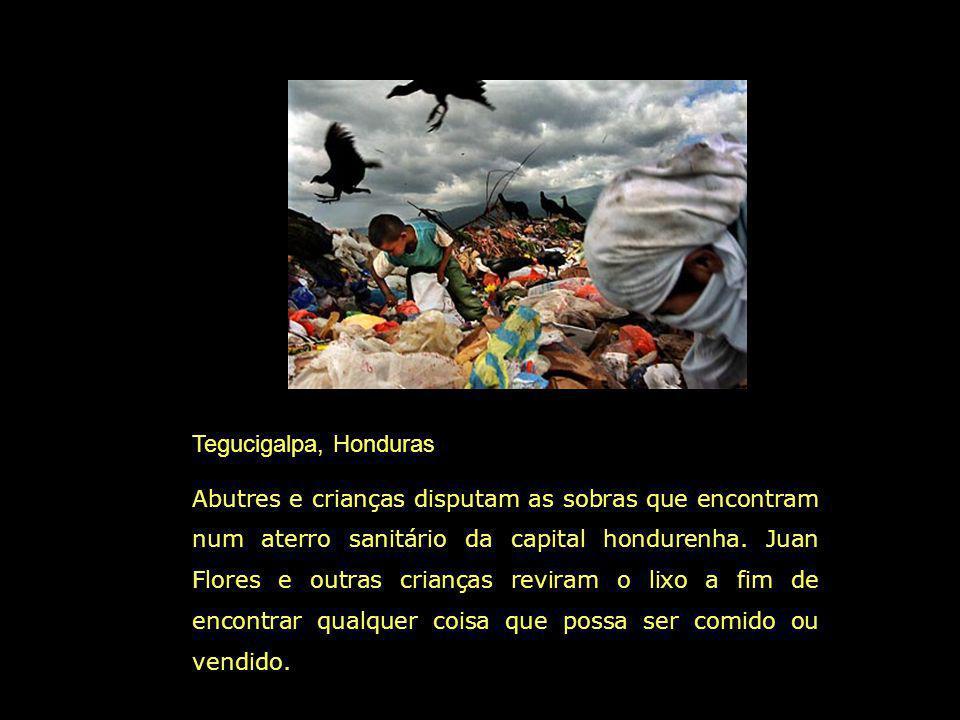 Tegucigalpa, Honduras Abutres e crianças disputam as sobras que encontram num aterro sanitário da capital hondurenha.