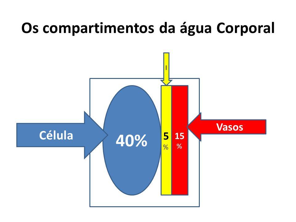 Os compartimentos da água Corporal 40% 15 % 5%5% Célula Vasos I