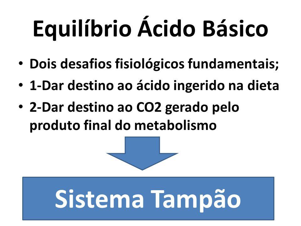 Equilíbrio Ácido Básico Dois desafios fisiológicos fundamentais; 1-Dar destino ao ácido ingerido na dieta 2-Dar destino ao CO2 gerado pelo produto final do metabolismo Sistema Tampão
