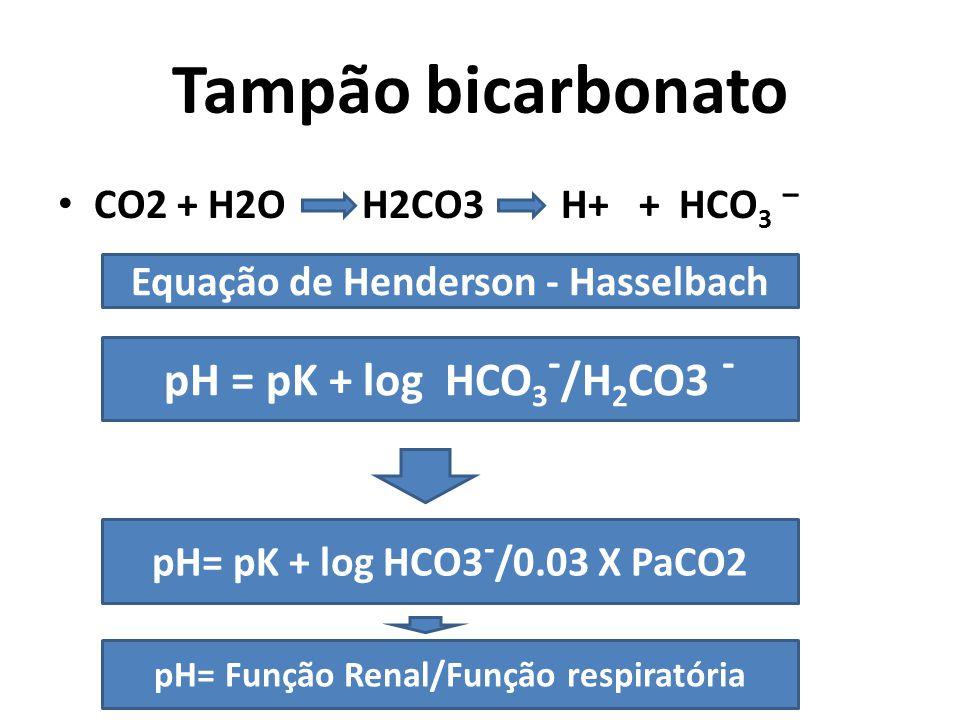 Tampão bicarbonato CO2 + H2O H2CO3 H+ + HCO 3 – Equação de Henderson - Hasselbach pH = pK + log HCO 3 - /H 2 CO3 - pH= pK + log HCO3 - /0.03 X PaCO2 pH= Função Renal/Função respiratória