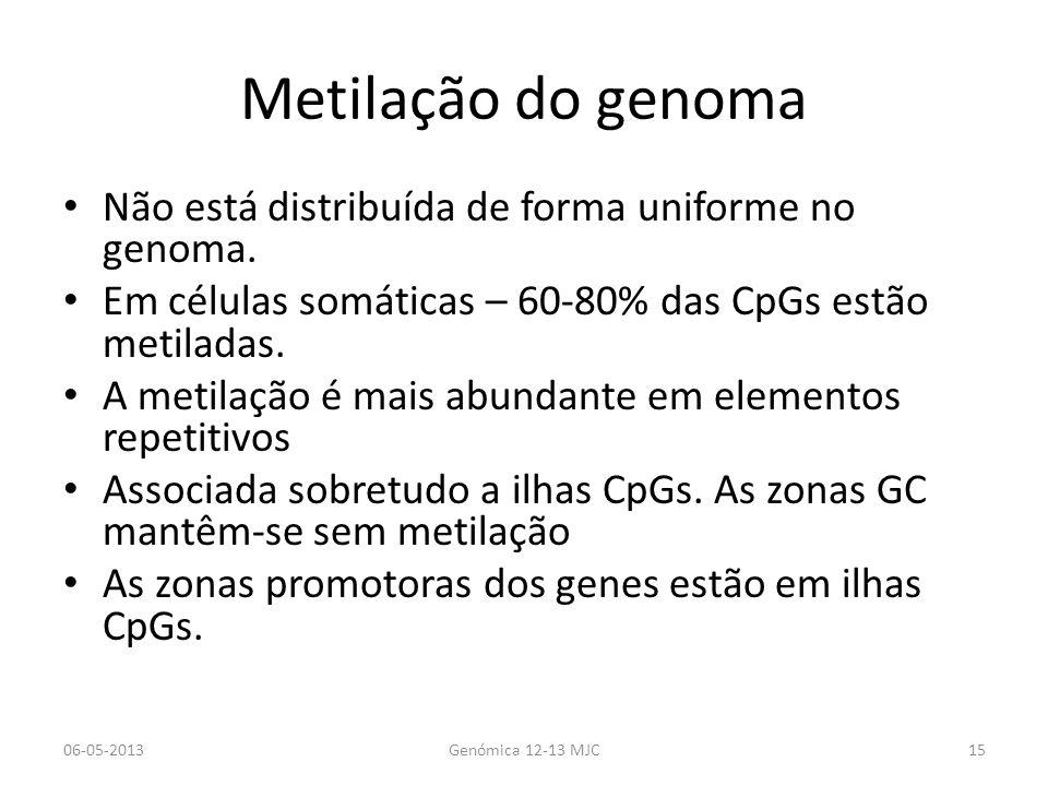 Metilação do genoma Não está distribuída de forma uniforme no genoma. Em células somáticas – 60-80% das CpGs estão metiladas. A metilação é mais abund