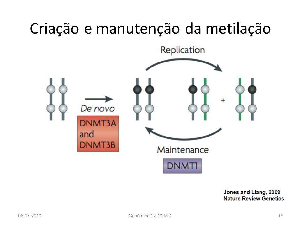 Criação e manutenção da metilação 06-05-2013Genómica 12-13 MJC18