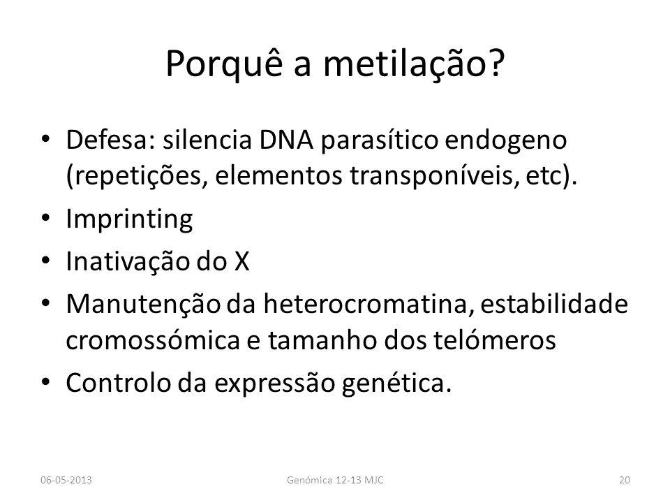 Porquê a metilação? Defesa: silencia DNA parasítico endogeno (repetições, elementos transponíveis, etc). Imprinting Inativação do X Manutenção da hete