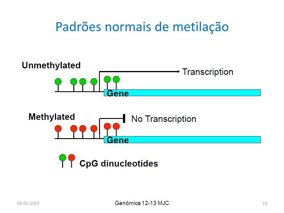 Padrões normais de metilação Genómica 12-13 MJC 06-05-201324