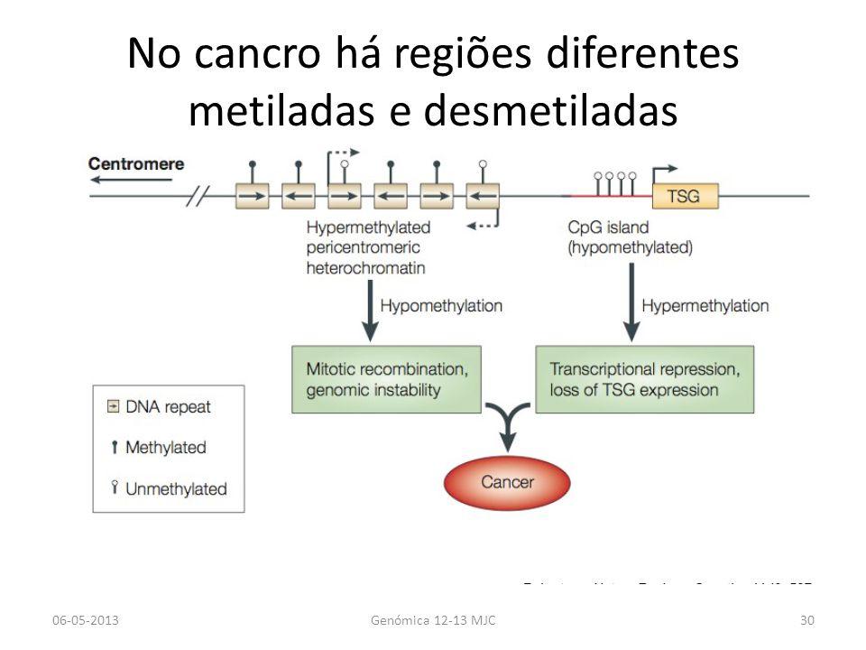 No cancro há regiões diferentes metiladas e desmetiladas 06-05-2013Genómica 12-13 MJC30