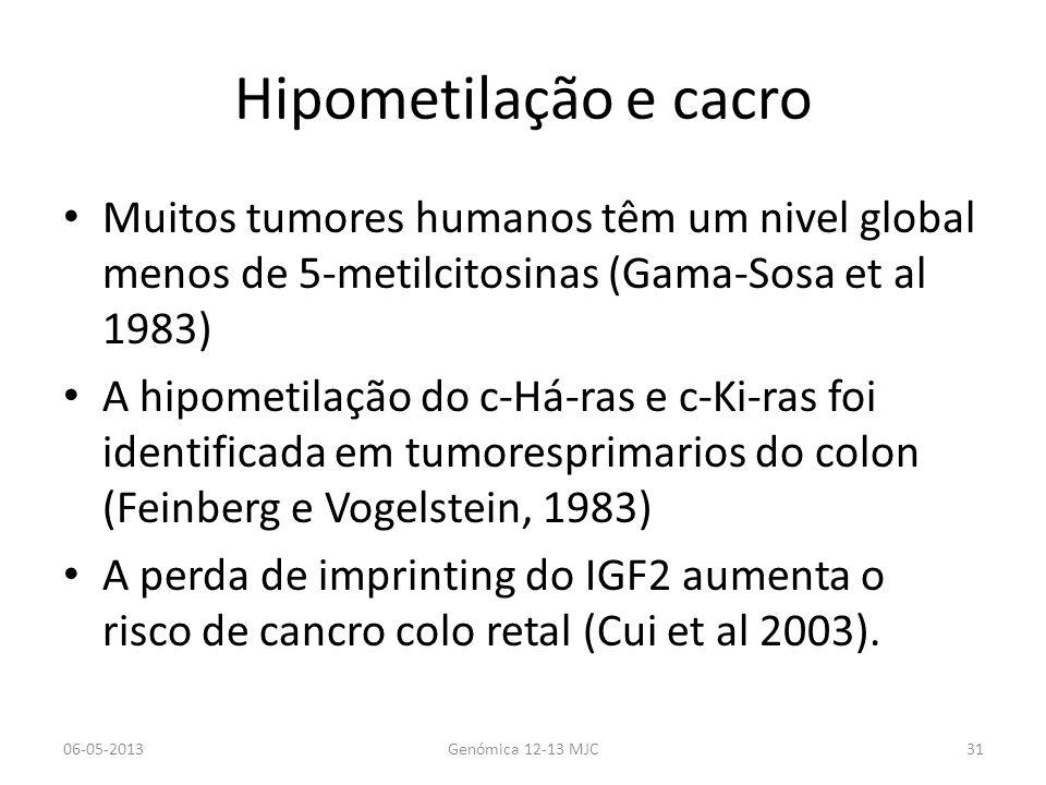 Hipometilação e cacro Muitos tumores humanos têm um nivel global menos de 5-metilcitosinas (Gama-Sosa et al 1983) A hipometilação do c-Há-ras e c-Ki-ras foi identificada em tumoresprimarios do colon (Feinberg e Vogelstein, 1983) A perda de imprinting do IGF2 aumenta o risco de cancro colo retal (Cui et al 2003).