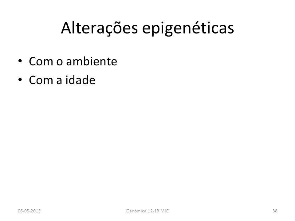 Alterações epigenéticas Com o ambiente Com a idade 06-05-2013Genómica 12-13 MJC38