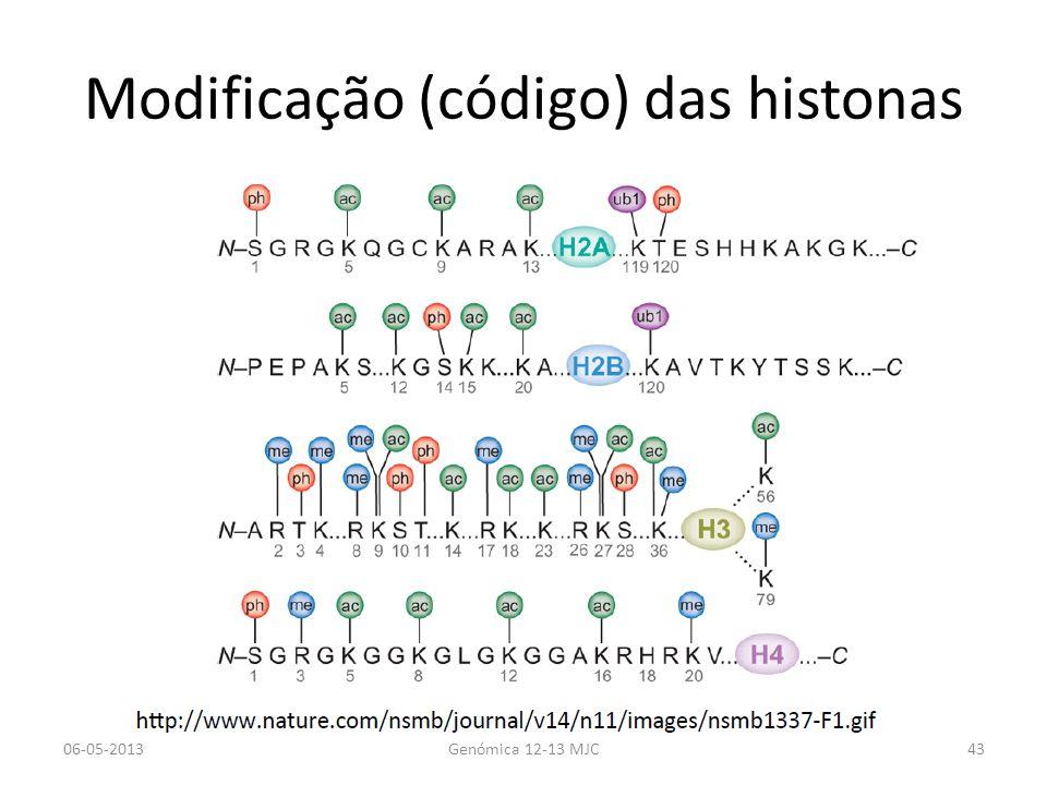 Modificação (código) das histonas 06-05-2013Genómica 12-13 MJC43