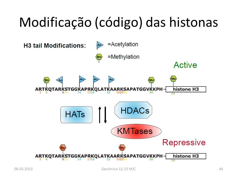 Modificação (código) das histonas 06-05-2013Genómica 12-13 MJC44