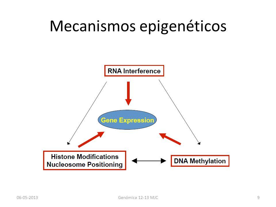 Mecanismos epigenéticos 06-05-2013Genómica 12-13 MJC9