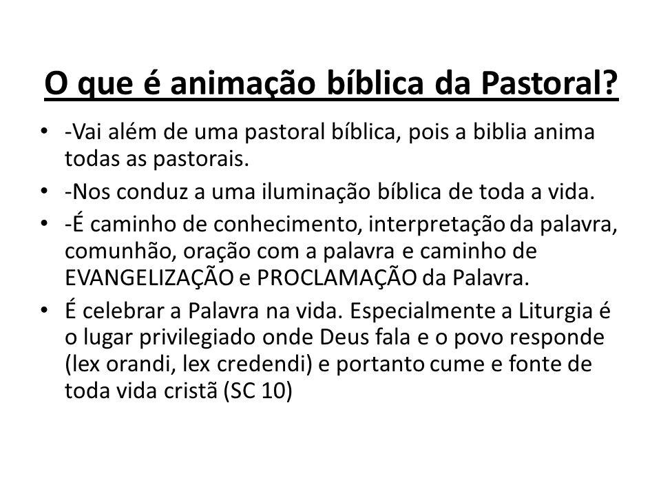 O que é animação bíblica da Pastoral.