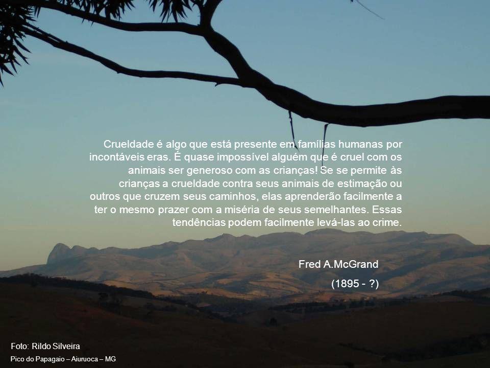 Foto: Rildo Silveira Pico do Papagaio – Aiuruoca – MG Aqueles que renegam Deus destroem a nobreza do homem.