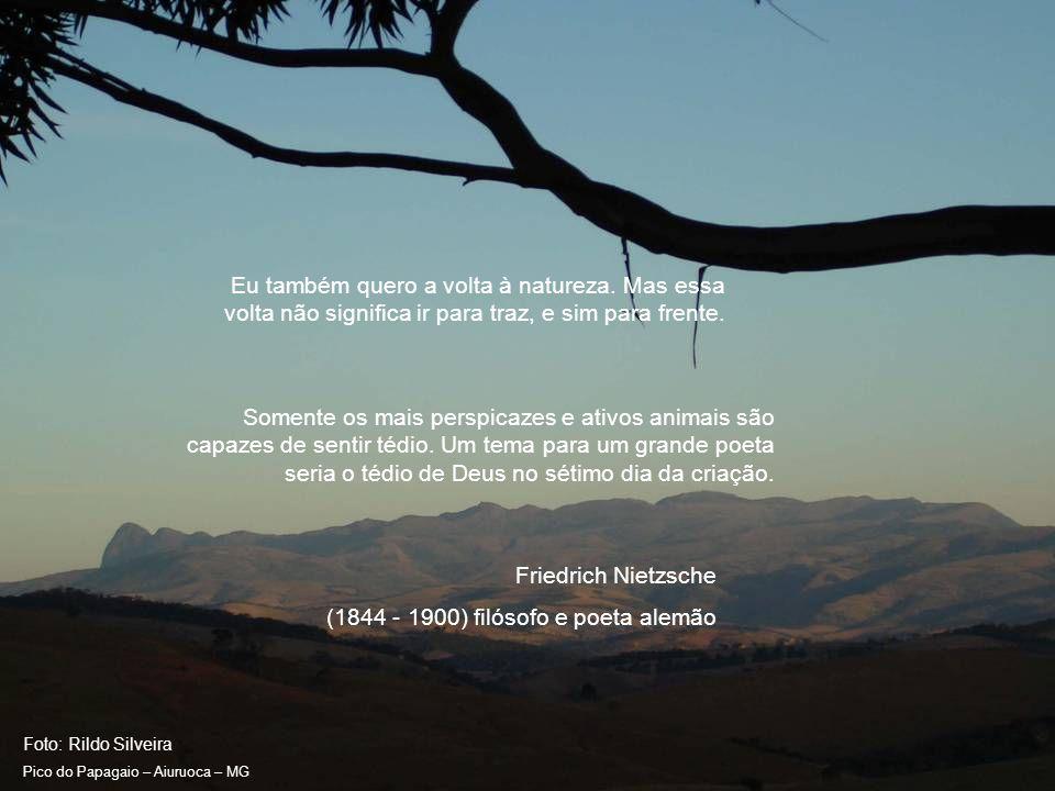 Foto: Rildo Silveira Pico do Papagaio – Aiuruoca – MG Crueldade é algo que está presente em famílias humanas por incontáveis eras.