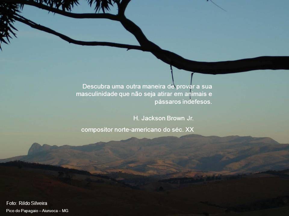 Foto: Rildo Silveira Pico do Papagaio – Aiuruoca – MG Desconheço qualquer grupo ambiental em qualquer país que deixe de ver seu governo como um adversário.