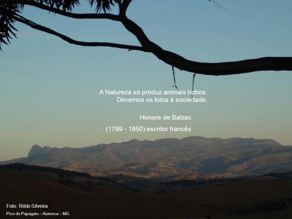 Foto: Rildo Silveira Pico do Papagaio – Aiuruoca – MG Quanto mais conheço os homens mais estimo os animais.